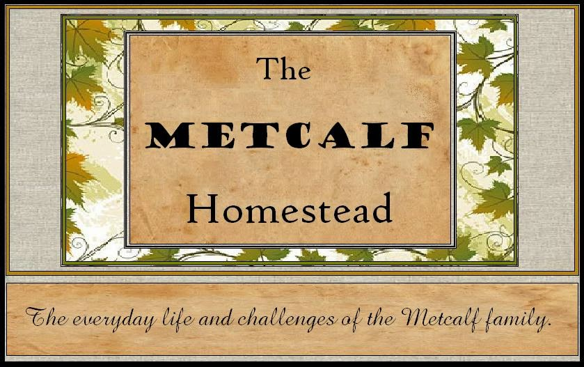 Metcalf Homestead