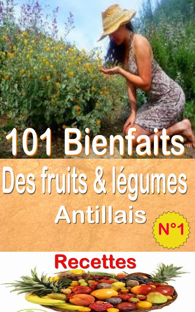 101 bienfaits des fruits l gumes antillais recettes volume 1 freddy algou. Black Bedroom Furniture Sets. Home Design Ideas