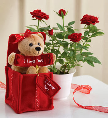 Cute Teddy Bears With Roses Mobile Wallpapers