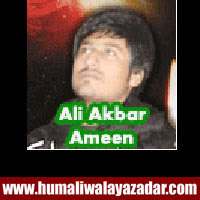 http://ishqehaider.blogspot.com/2013/11/ali-akbar-ameen-nohay-2014.html