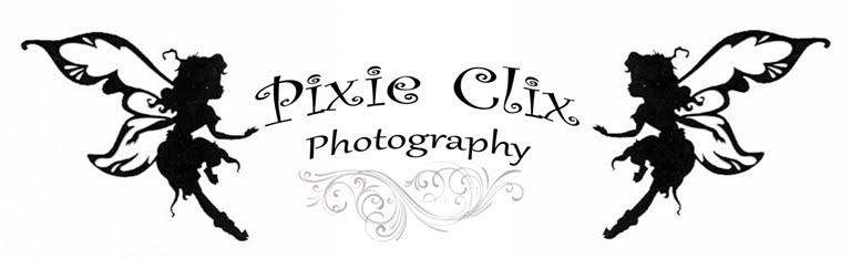 Pixie Clix