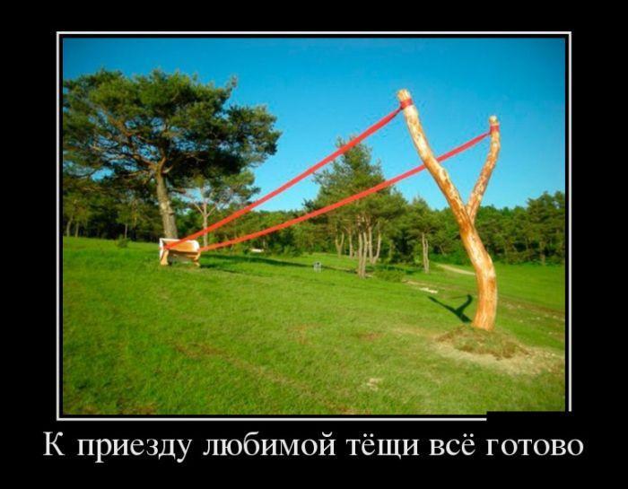 Любимая поза тещи фото 174-114