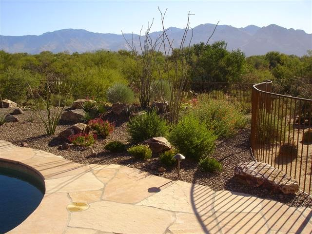 Be sure to set up a thorough plan of action before you begin landscaping.  It's really a good idea to make a drawing for the landscaping project on  the ... - Landscape Ideas - Trincherapoetica: Tucson Landscape Design