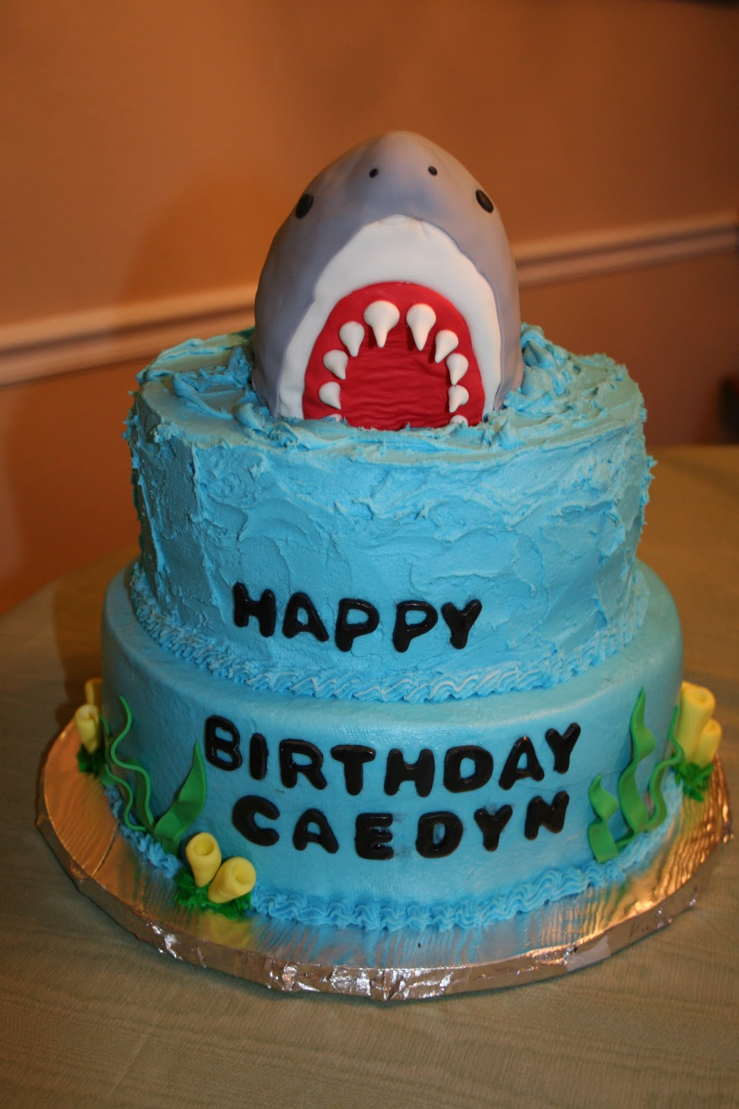 Rachels Creative Cakes Shark Birthday Cake
