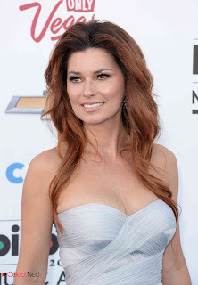 Shania Twain Pictures in Evening Dress at 2013 Billboard Music Awards ~ Celebs Next