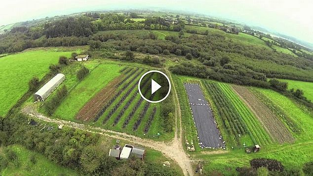 Fergal Smith - Seeds Of Change Growing Episode 19