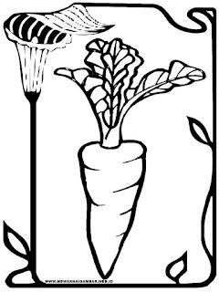 mewarnai gambar wortel