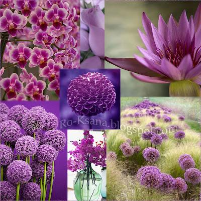 Вдохновение природа цветы дизайн палитра Сияющая Орхидея Radiant Orchid цвет года 2014 модные украшения