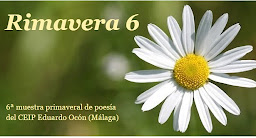 Rimavera 6