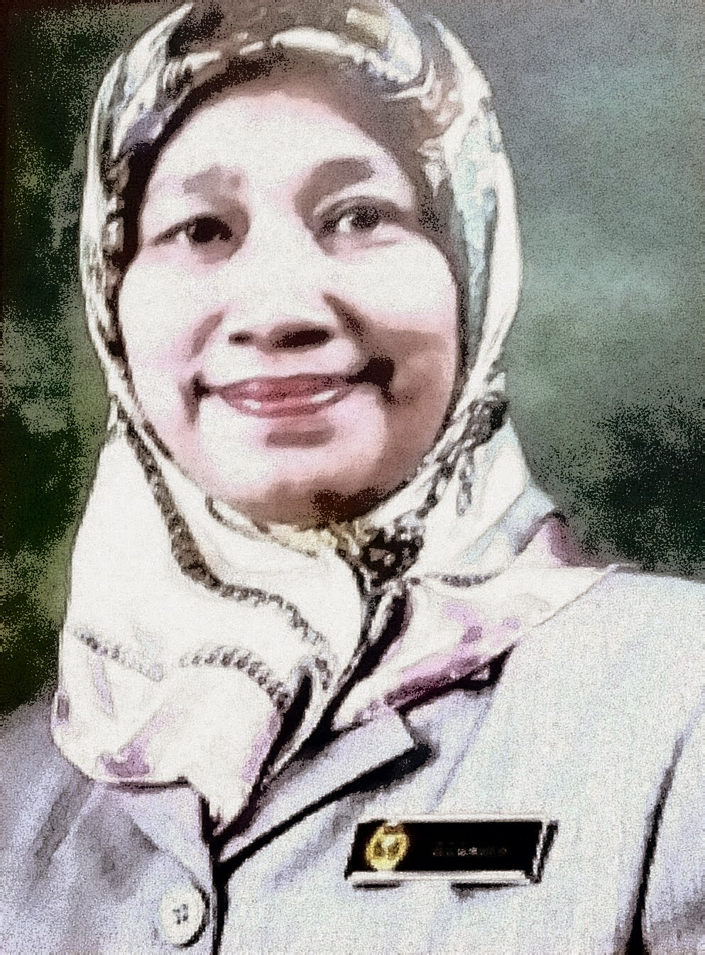 Dato' Rozaina Dato' Radzi (Telah Bersara)