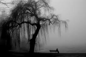Filha do silêncio e da solidão