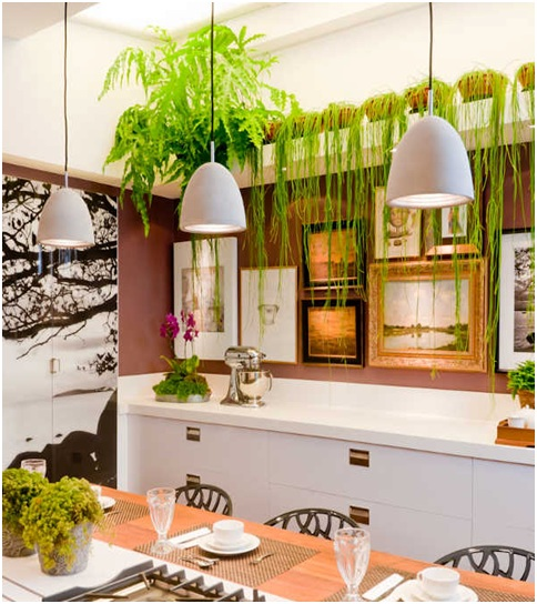 Beautiful kitchen with paintings and plants