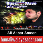 http://www.nohaypk.com/2015/10/ali-akbar-ameen-nohay-2016.html