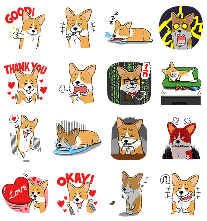 Welsh Corgi Mr. Lee Special Edition