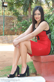 Nikesha Patel Spicy Transparent Top Tight Mini Skirt Spicy Pictureshoot
