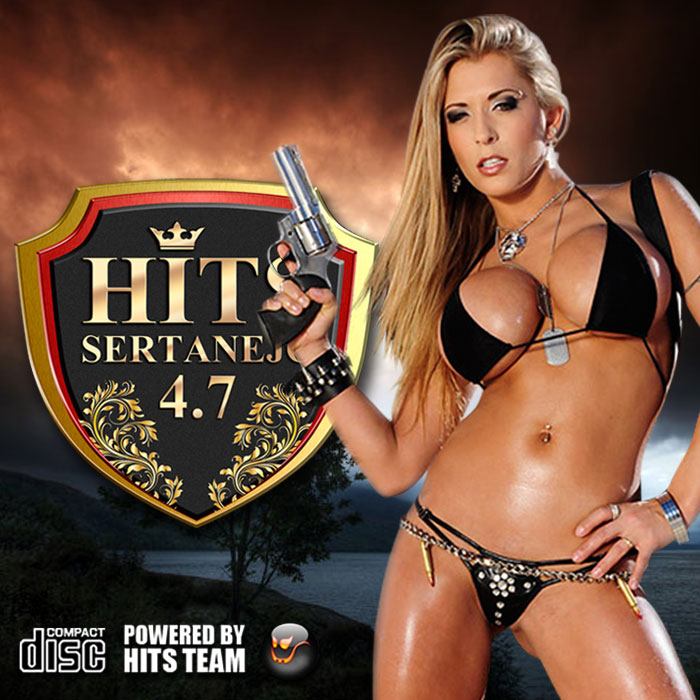 Hits Sertanejo - 4.7