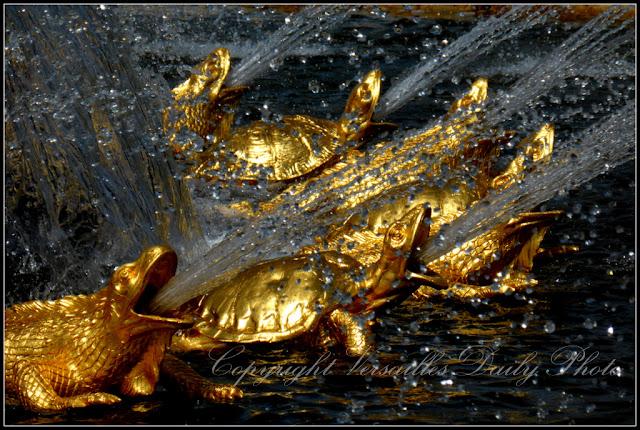 Bassin de Latone Versailles tortues