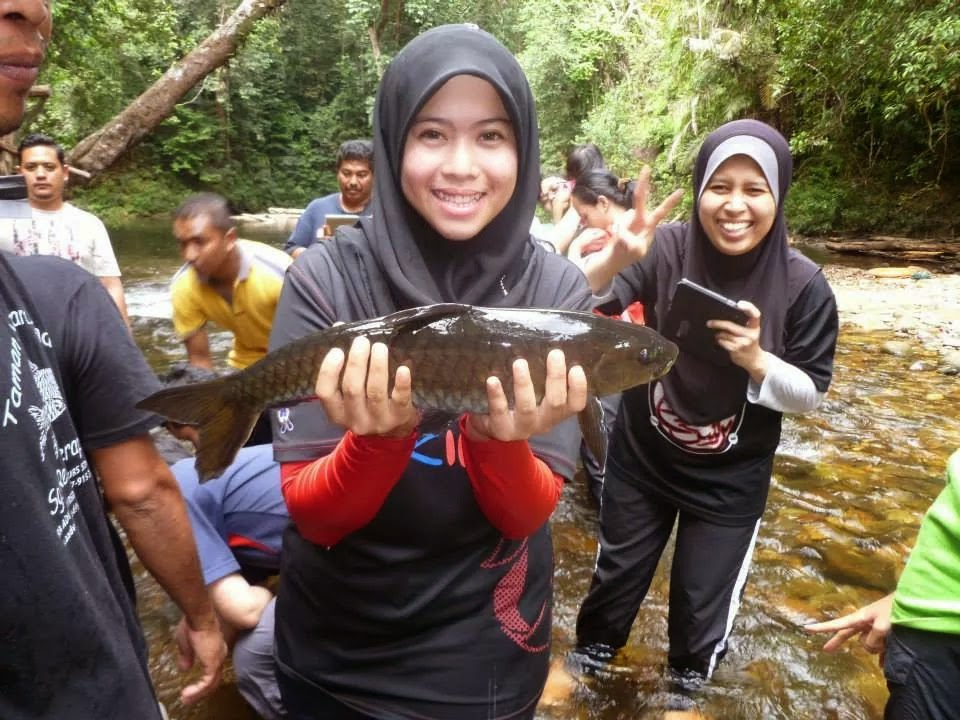 XPDC Merapoh - Ikan kelah