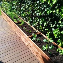 Tu huerto urbano con jardineras - Jardineras huerto urbano ...