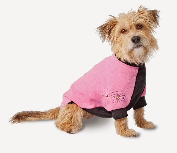 Pink Zinnias Dog Coat