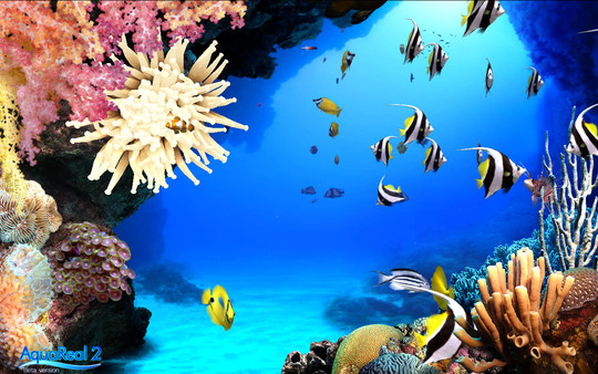 DigiFish Aqua Real 2 PC Game Free Download