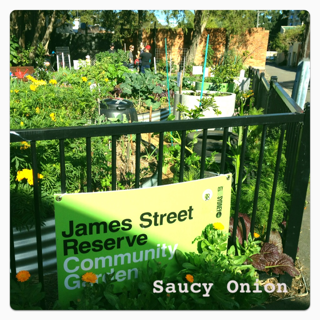 Saucy Onion Sydney James St Reserve Community Garden