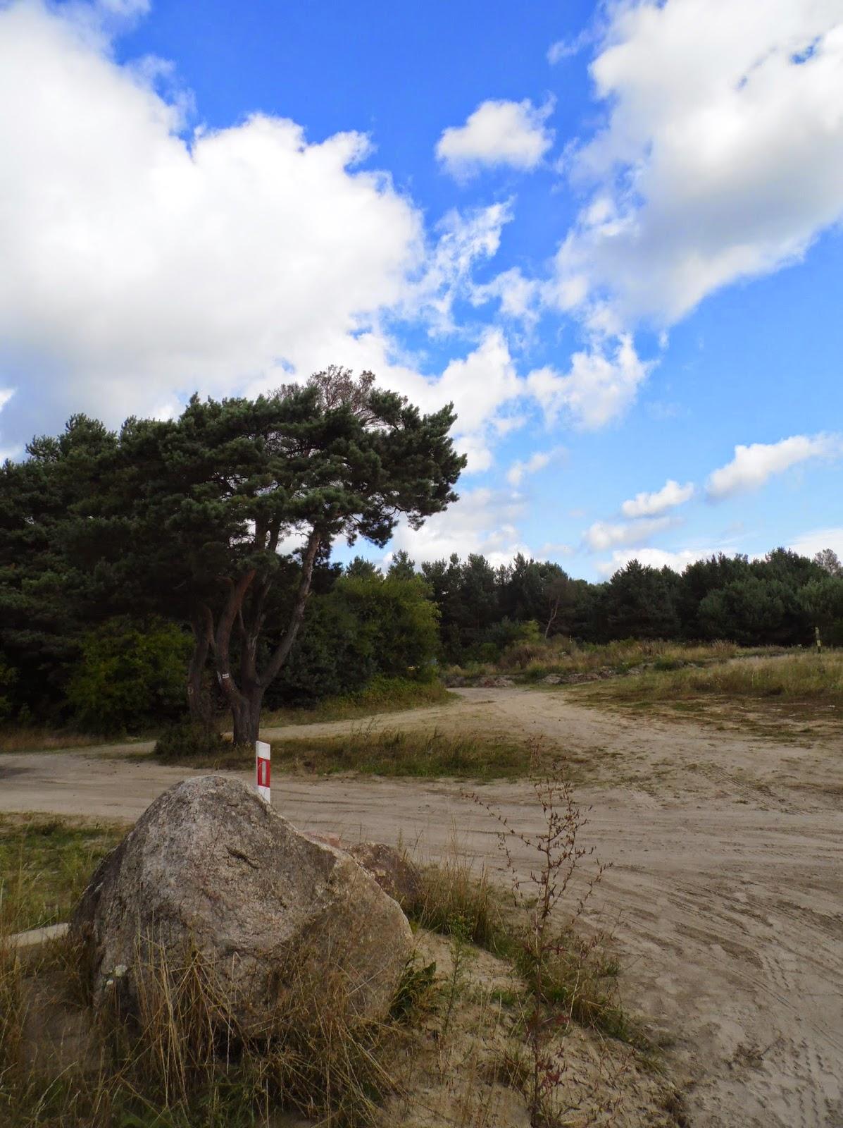 Skrzyżowanie za Strondowym Jarem w Jatrzębej Górze, przy szlaku w kierunku na Ostrowo