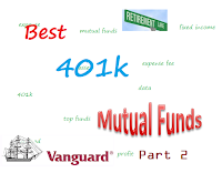 Vanguard's Best 401k Funds: Part 2