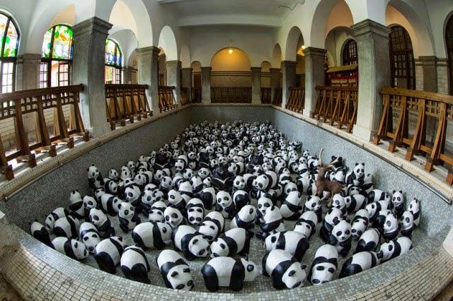 inwazja pand hong kong