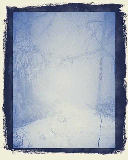 trei caldari in ceata