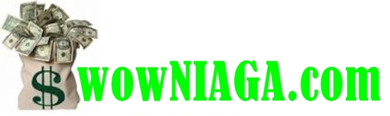 wowNIAGA.com