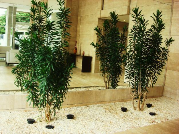 plantas toxicas jardim:Pin Plantas Ornamentais Para Jardim Jardins 3 on Pinterest