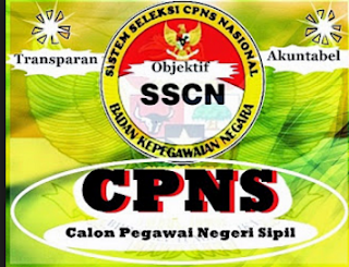 Image Result For Pendaftaran Cpns Sscn