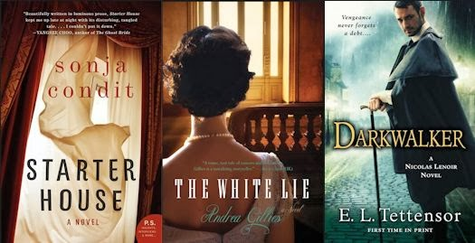 2013 Debut Author Challenge Cover Wars - December 2013 Winner