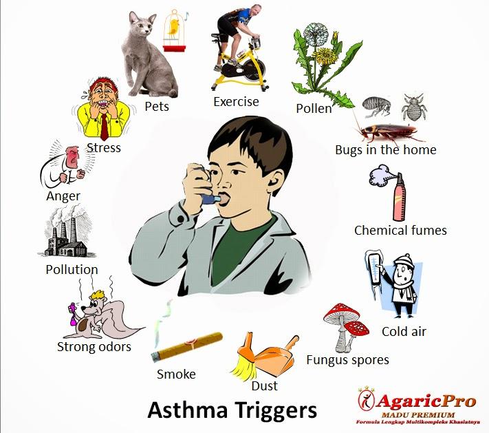 penyebab asma cukup banyak