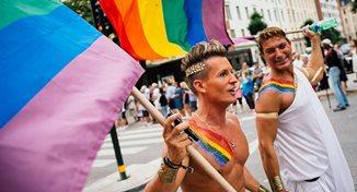 Incredibil cât de mult pot întinde coarda sodomiții: polițiști agresați de activiști LGBT în Armeni