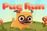 Pug Run!