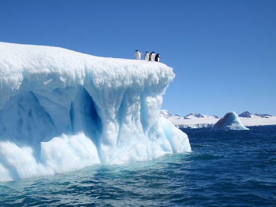 Laut Weddell, Air Laut Paling Jernih Di Dunia [ www.BlogApaAja.com ]