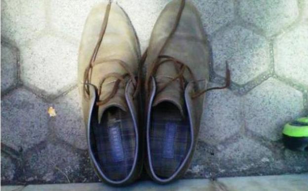 Sepatu Jokowi