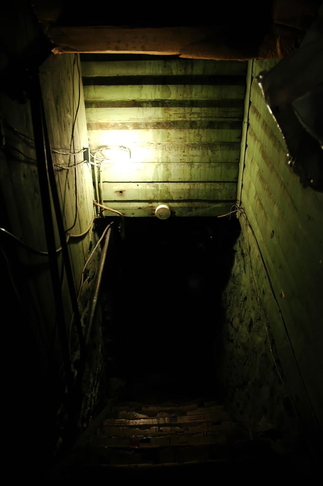 cartoon creepy basement viewing gallery