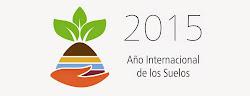 2015 Año Internacional de...