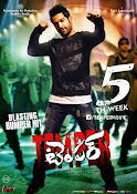 Temper movie 2nd week wallpapers-thumbnail-3