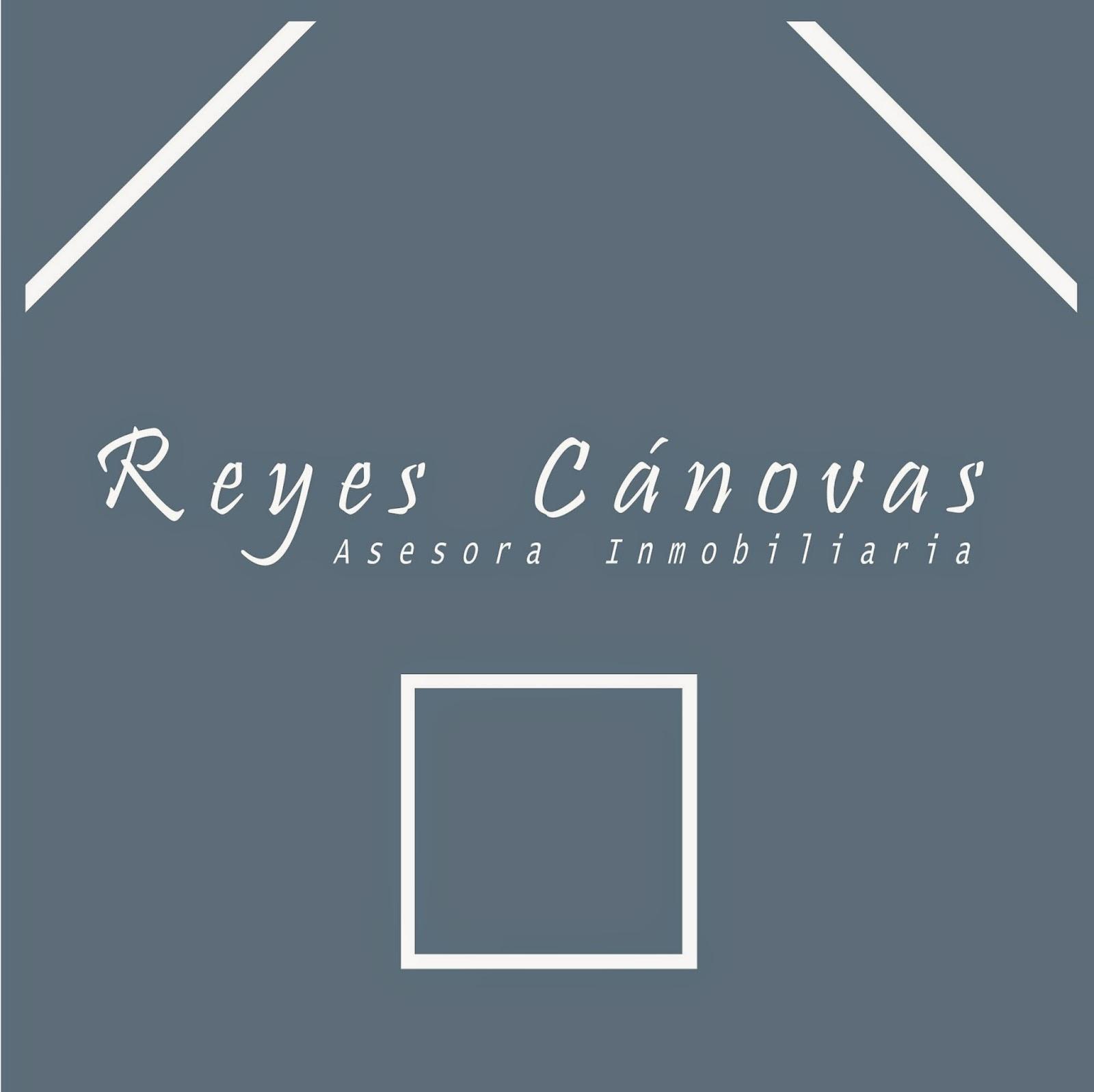 http://europaschoollinks.blogspot.com/2014/12/reyes-canovas-asesora-inmobiliaria.html