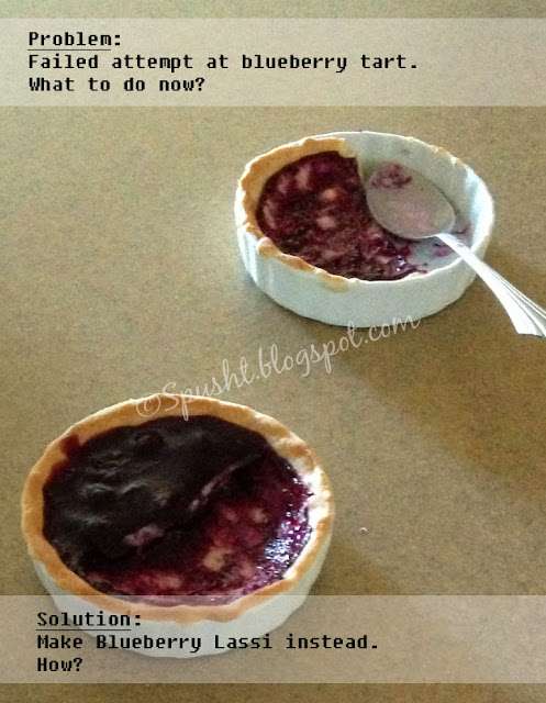 Spusht | Blueberry Tart did not turn out right?  No problem, here's a solution.