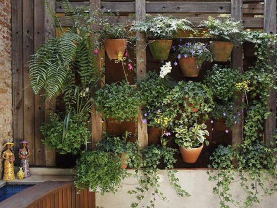 Crie Jardim: Id?ias para jardins - jardim vertical