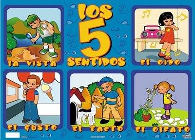 LAMINAS EDUCATIVAS LOS 5 SENTIDOS