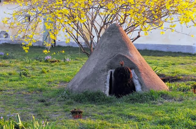 Earthen Doghouse