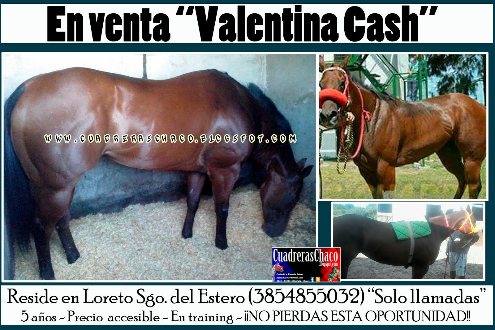 VNTA VALENTINA 16-2-17