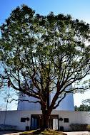 【ベルナール・ビュフェ美術館「ベルナール・ビュフェの生涯」(静岡県長泉町 クレマチスの丘)】