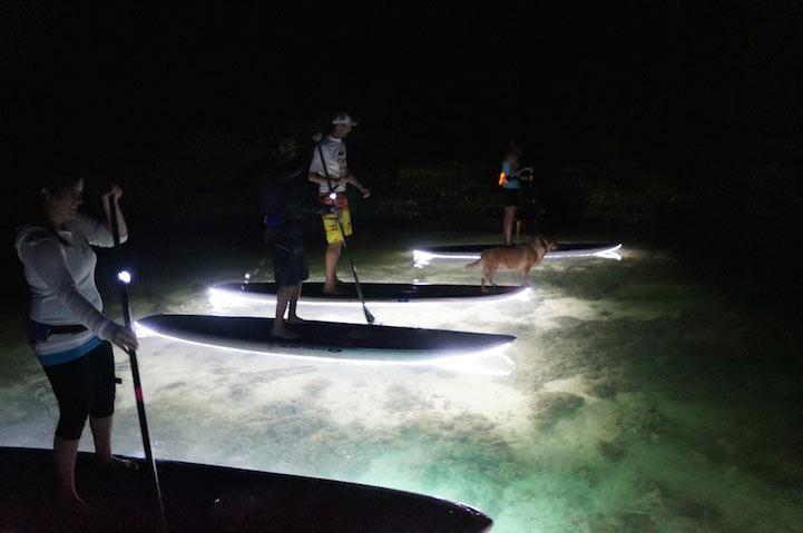 Innovadoras tablas de paddle con luces LED ofrecen vistas increíbles del mar nocturno